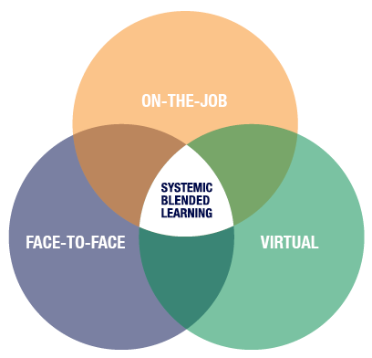 Systemic_blended_learning